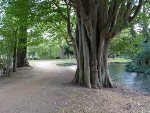 Ch Ch Meadow Walk